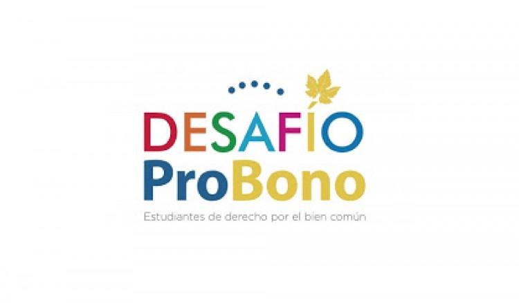 Desafío Pro Bono 2020, Segunda Edición