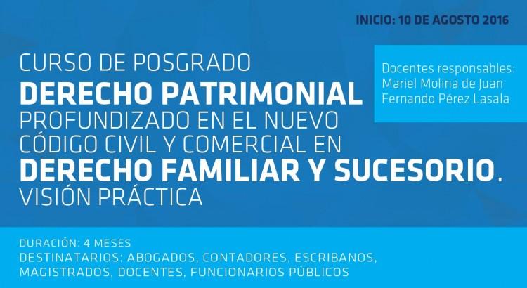 Curso de Derecho Patrimonial Profundizado en el Nuevo Código Civil y Comercial en Derecho Familiar y Sucesorio. Visión Práctica