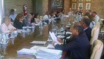 El Consejo Superior aprobó por unanimidad el Nuevo Plan de Estudio
